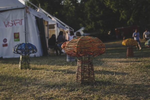 Pilze in der ArtZone - Foto:  Jérémie Dubois